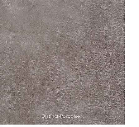 v-distinct-porpoise-1.jpg